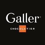 logo galler